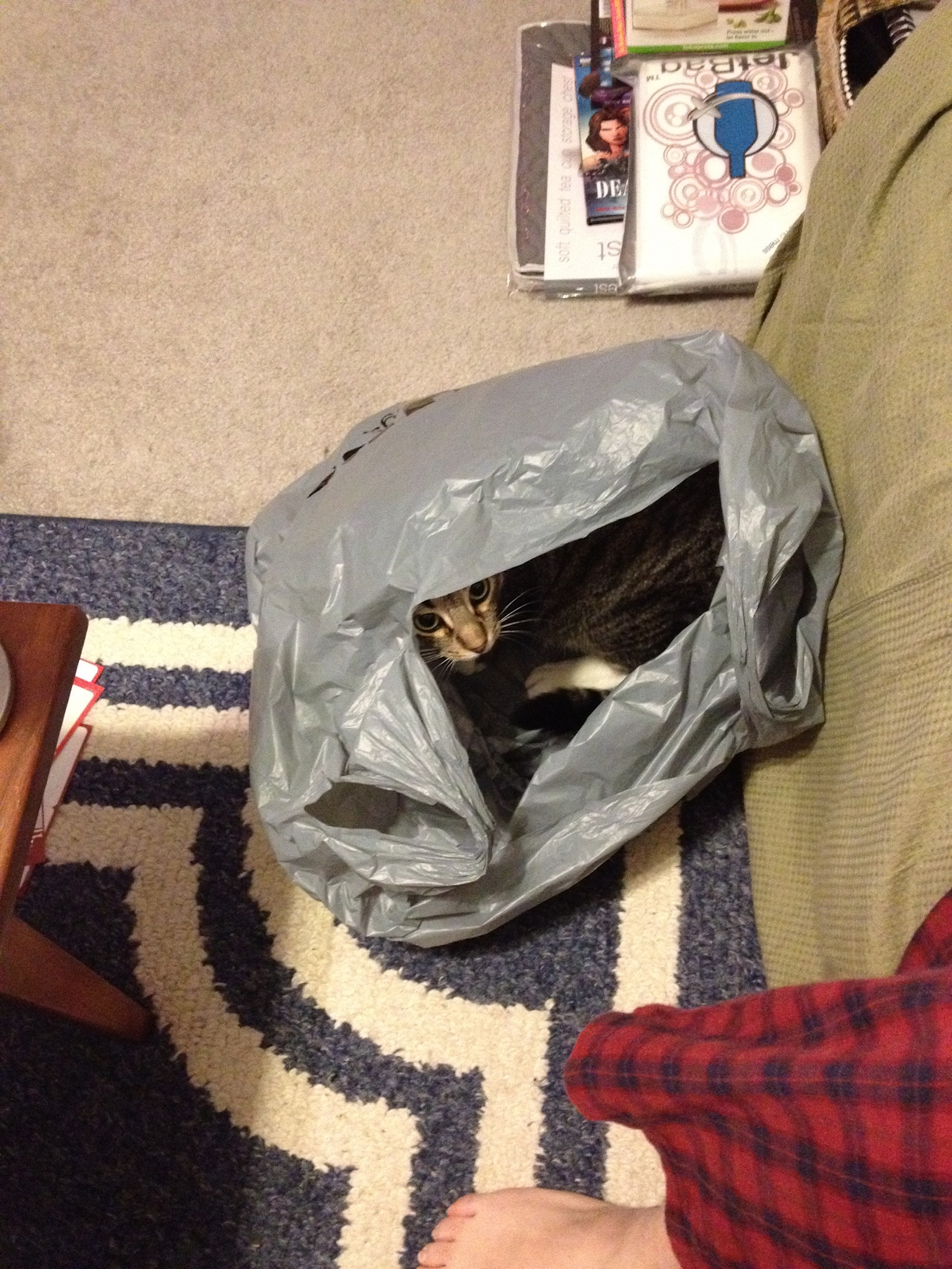 Haku in a plastic bag